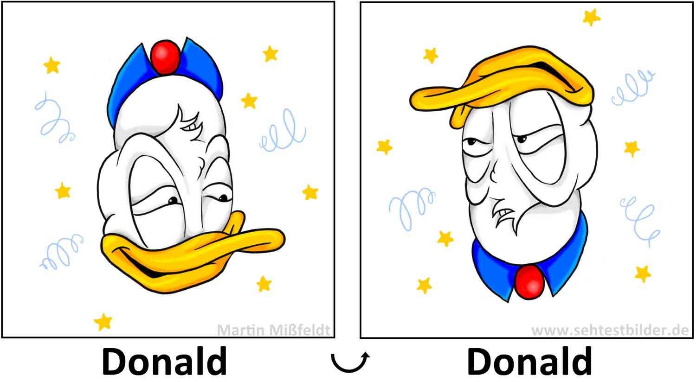 Drehbild Donald Optische Illusion on Optische Taeuschung