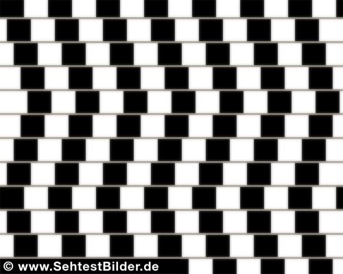 Optische Täuschung Linien parallel